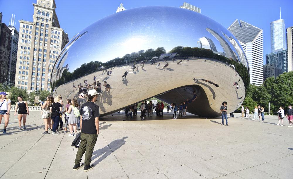 Jallal the bean .jpg