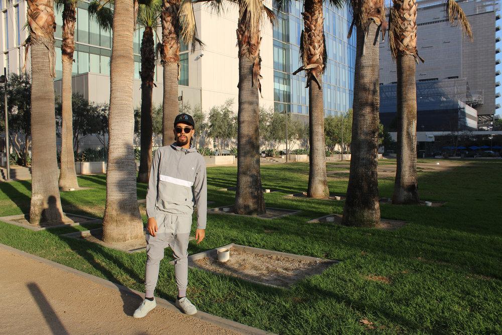 Jallal palm trees .jpg