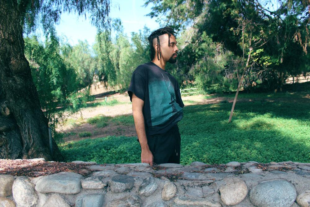 Jallal forest backyard .jpg