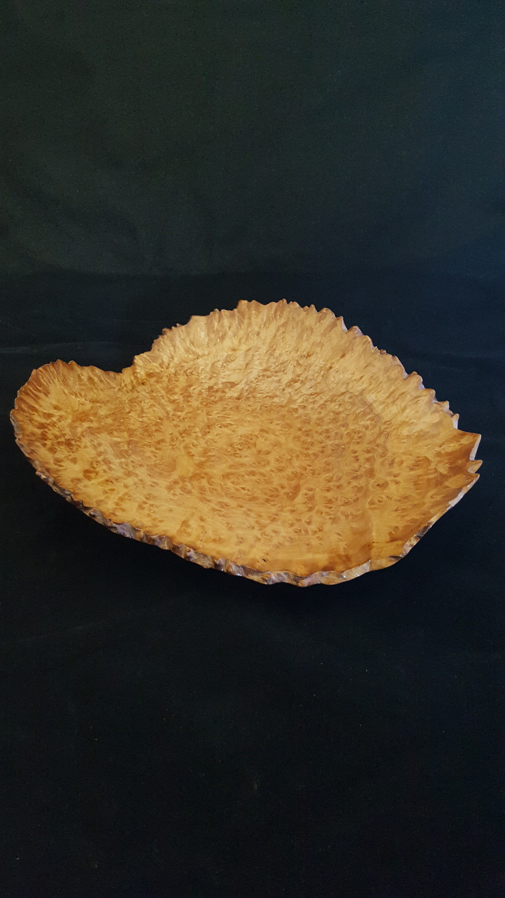 Madrone Burl