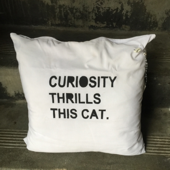 CURIOSITY CUSHION COVER screen printed on poly/cotton blend. 40cm x 40cm. $25
