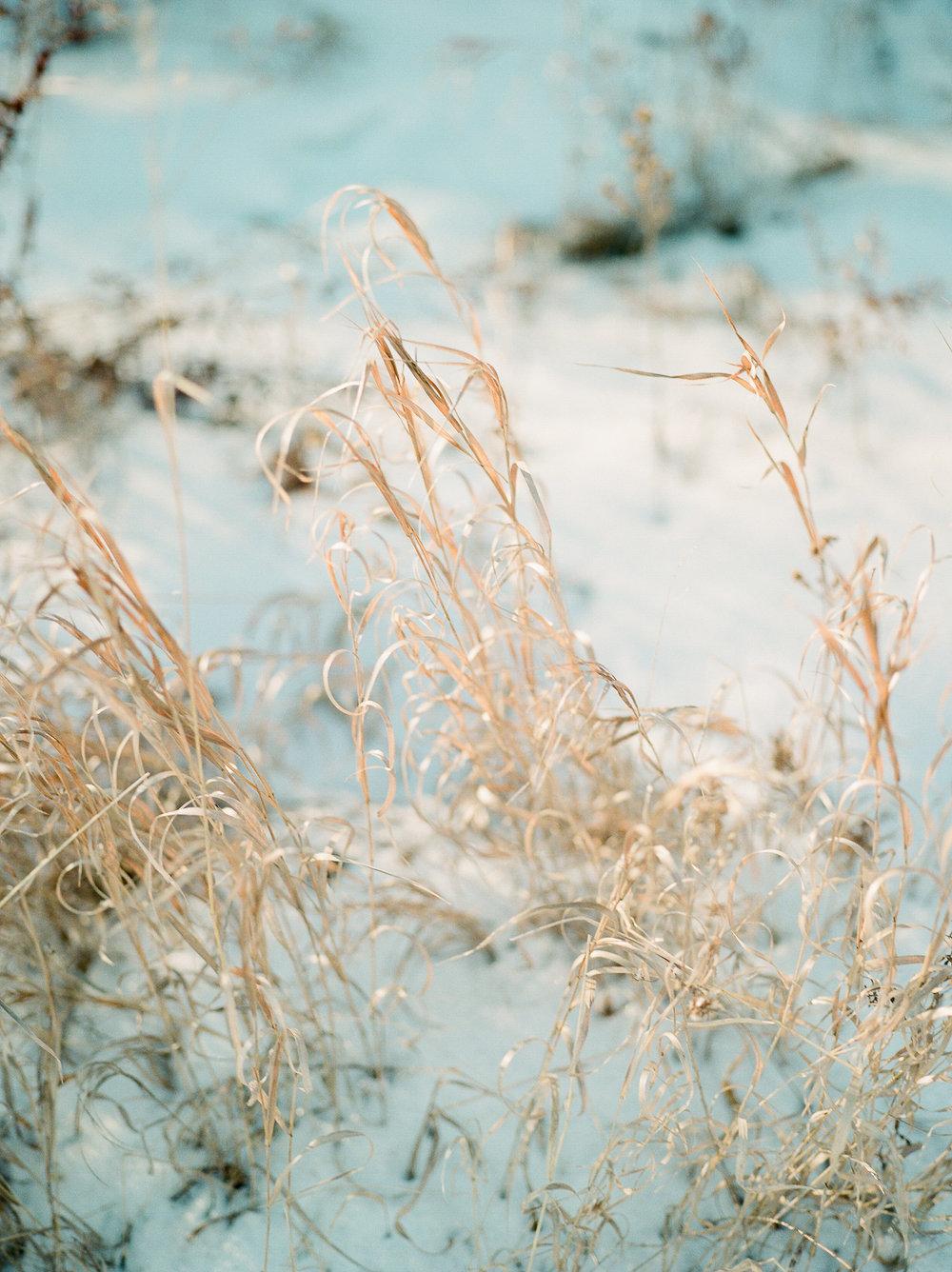 WinterStyledShoot-KMP004.JPG