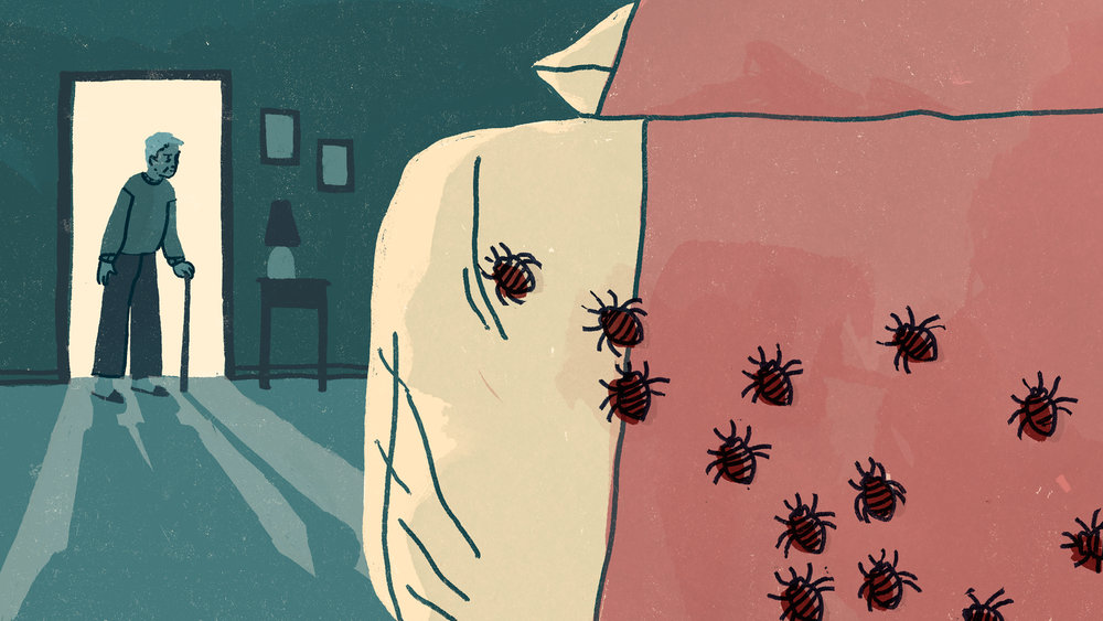 Illustration for The Local, for an article about seniors in Toronto dealing with bedbug infestations, 2017.