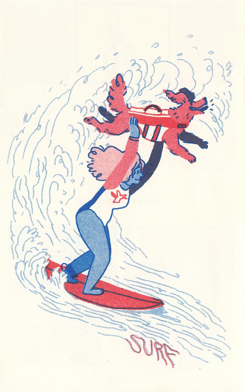 spot-surf.jpg