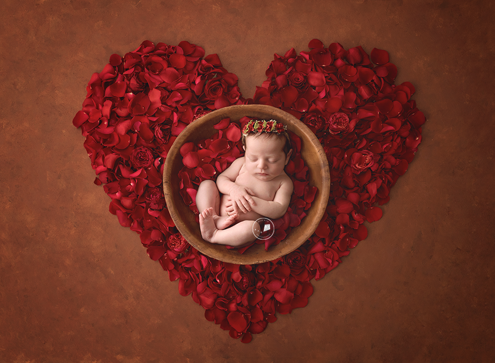 Boca-Raton-newborn-photographer-heartroses.png