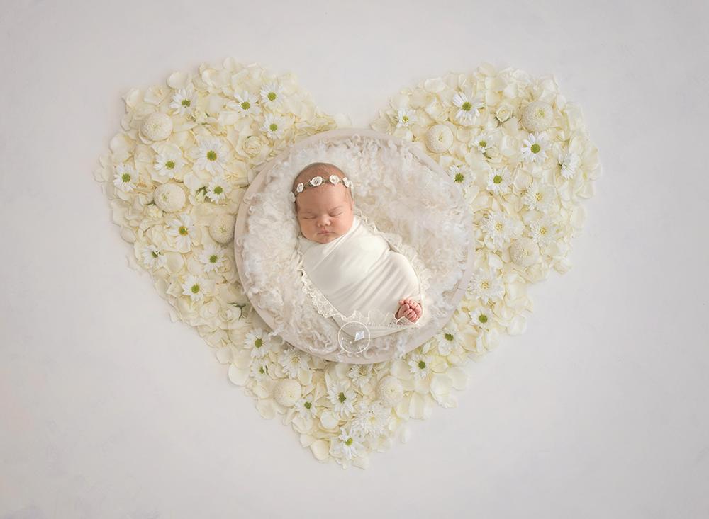 Boca-Raton-newborn-photographer-daisys.png