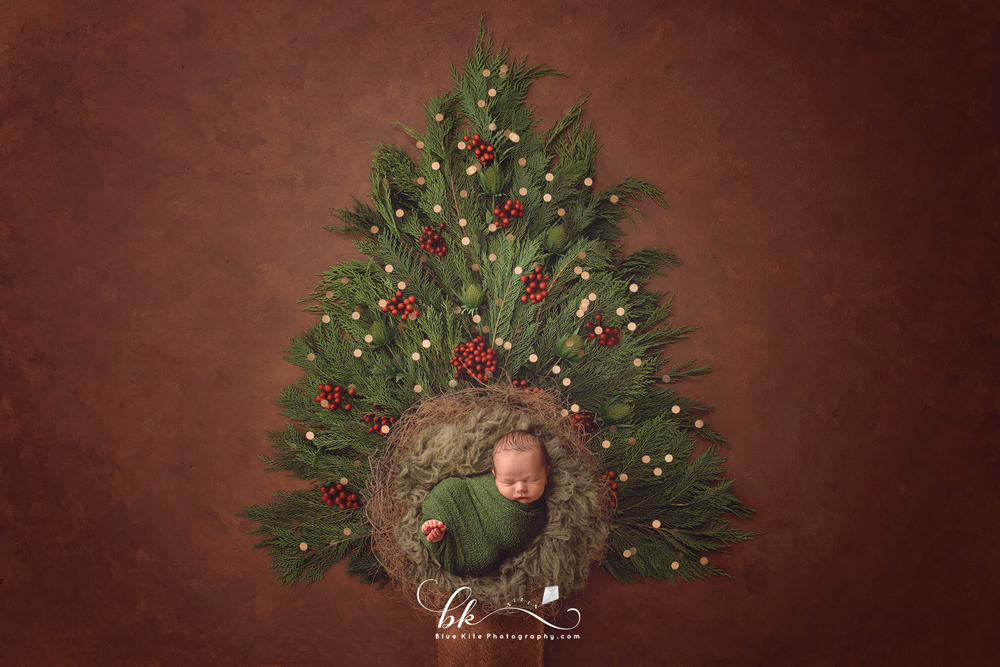 xmasbbphoto-2.png