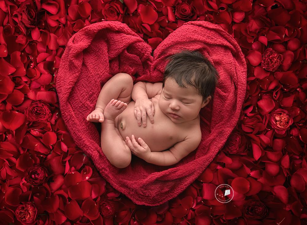 best newborn photographer in Weston