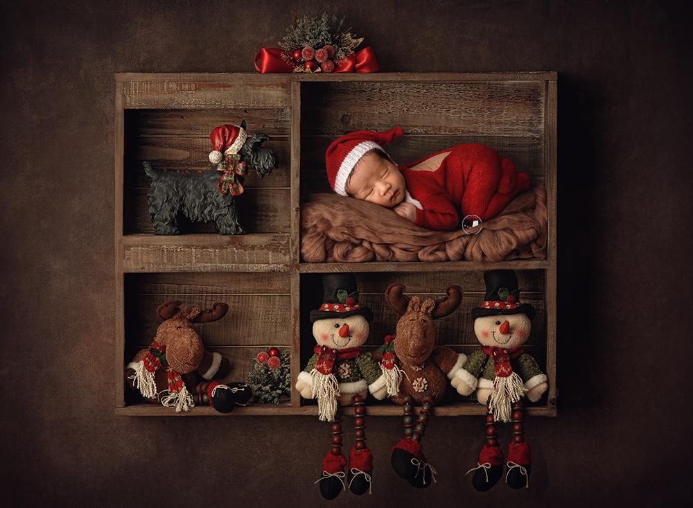 Boca-Raton-newborn-photographer-elf-on-the-shelf-christmas.png