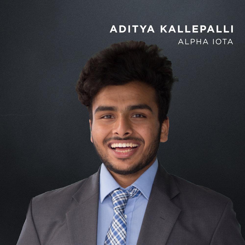 AdityaKallepalliWS.jpg