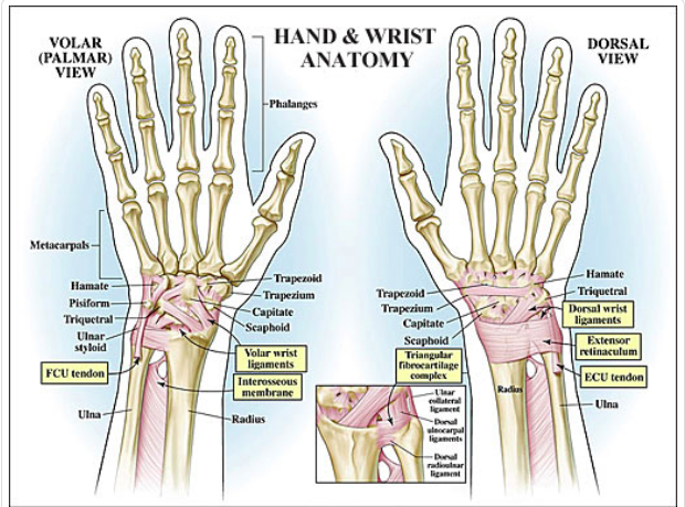Wrist Pain in CrossFit — Arrow Physical Therapy