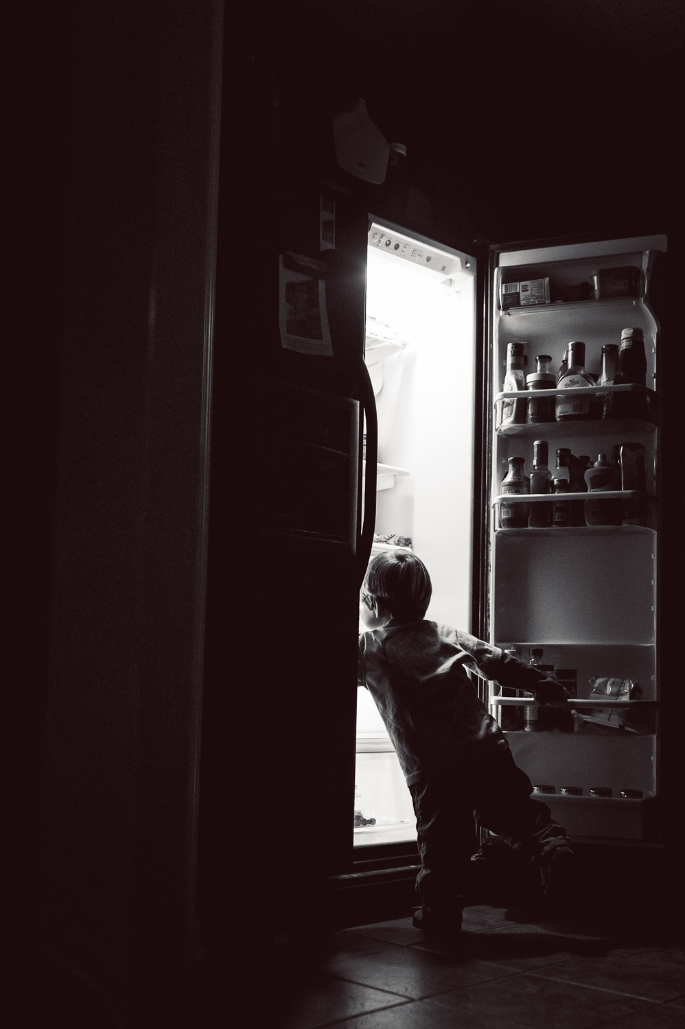little boy reaching in refrigerator | Huntsville AL photographer