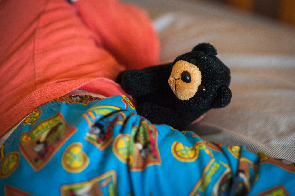 little boy holding small stuffed black bear | Huntsville photographer