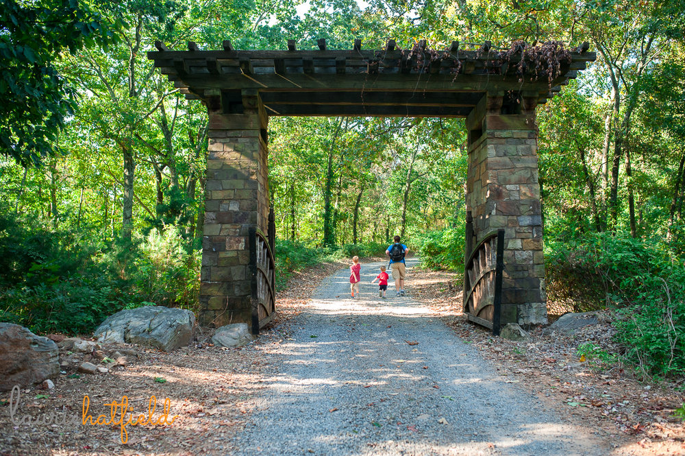 dad and 3 boys hiking on trail | Huntsville AL photographer