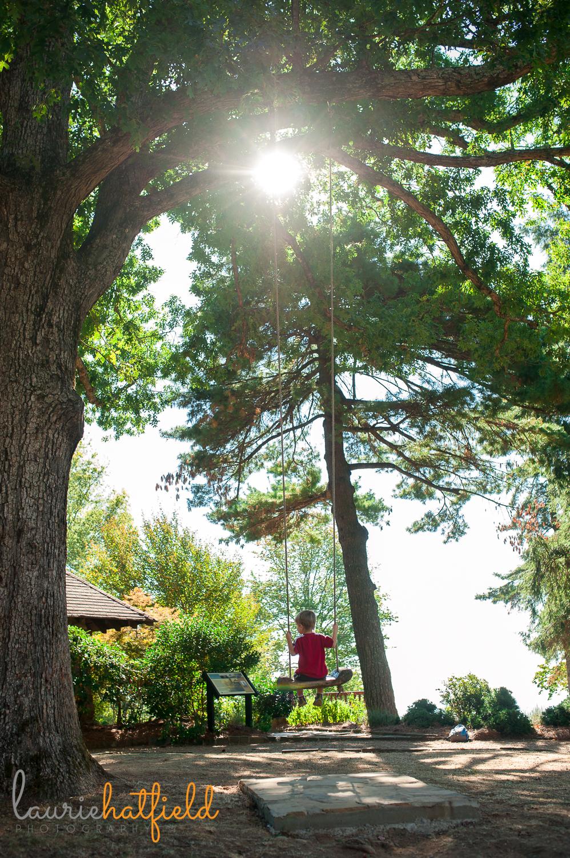 little boy on a swing in the woods | Huntsville AL family photographer