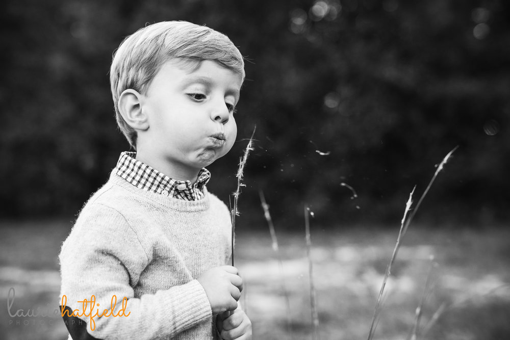 3-year-old boy blowing dandelions | Mobile AL family photographer