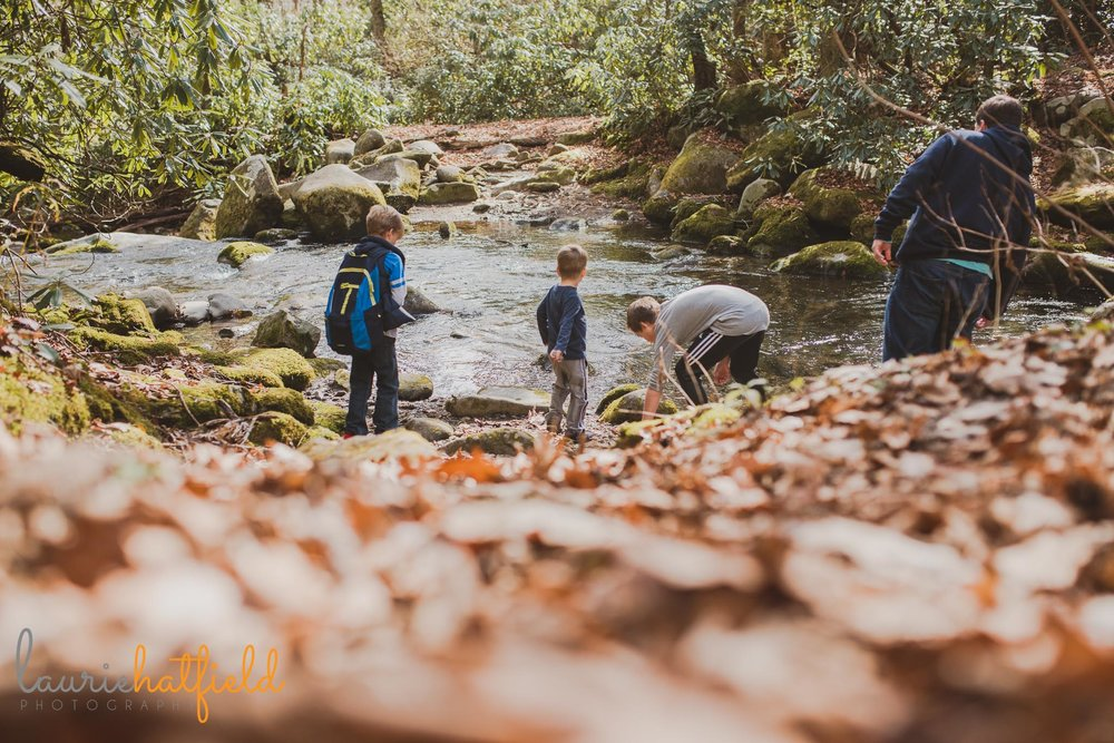 dad and sons throwing rocks in a creek | Mobile AL family photographer