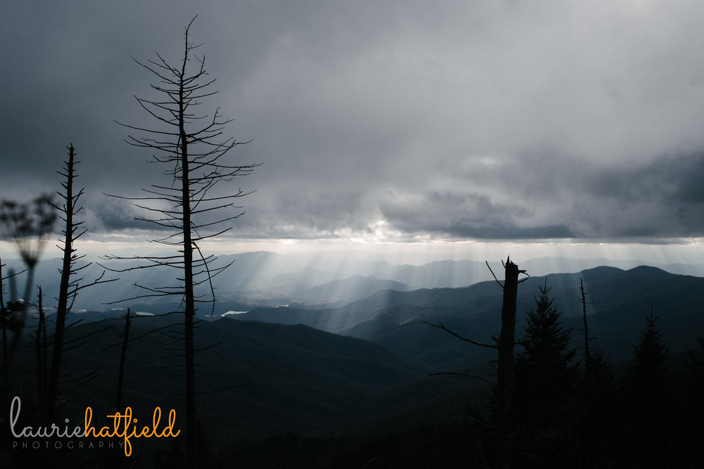 Clingmans Dome | Mobile AL photographer