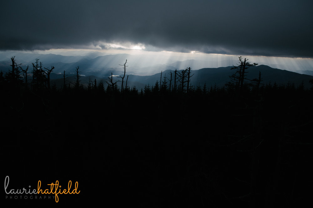 Clingmans Dome | Mobile AL family photographer