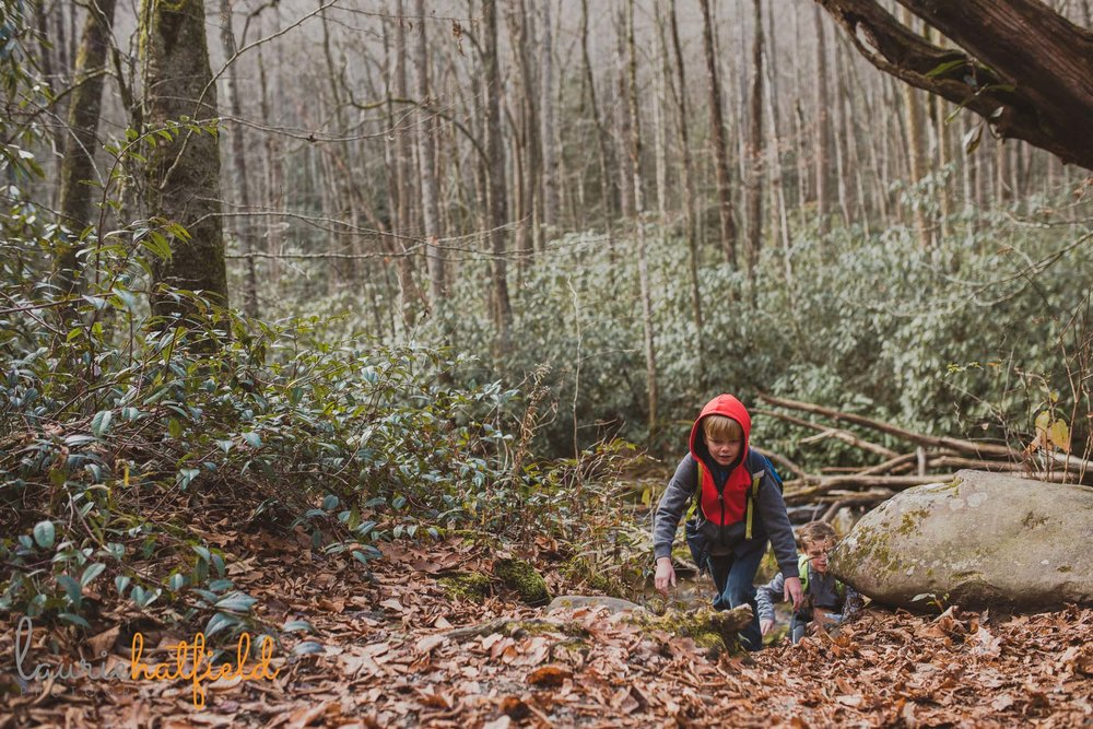 little boy hiking in woods | mobile al child photographer