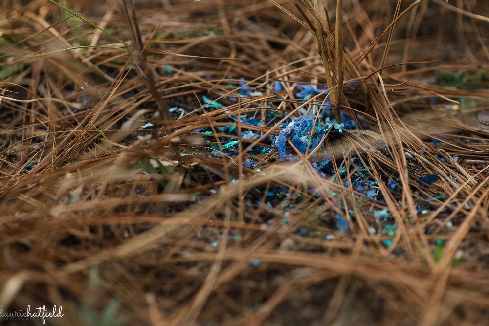 blue confetti gender reveal | Mobile AL newborn photographer
