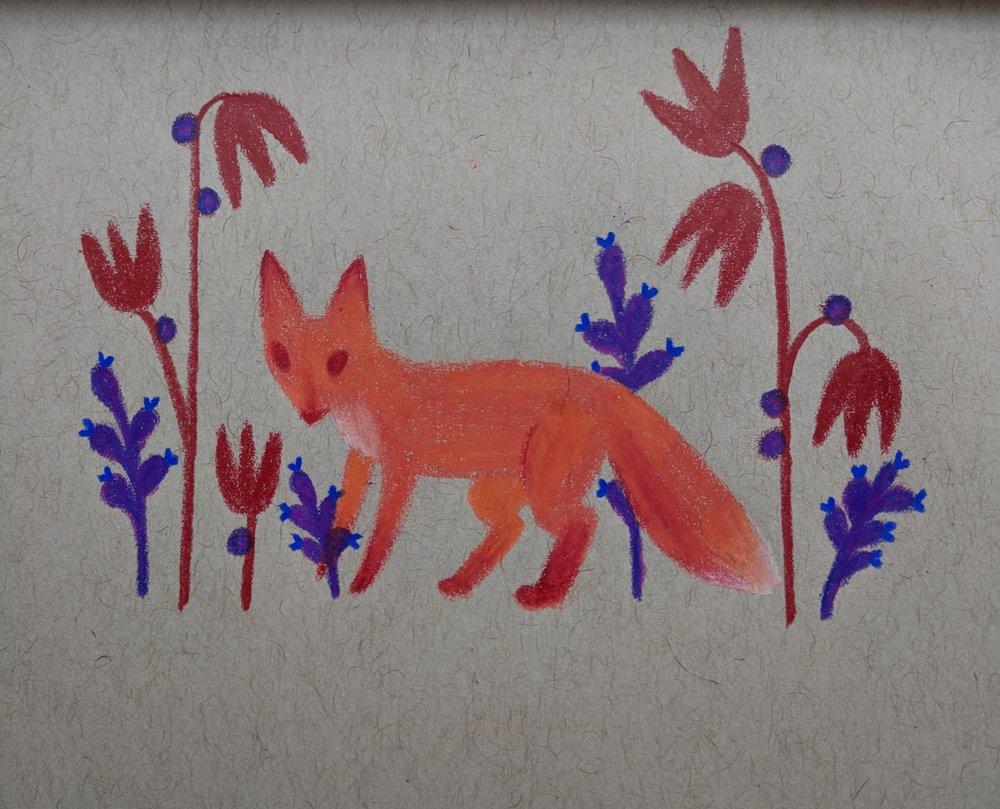 red fox!