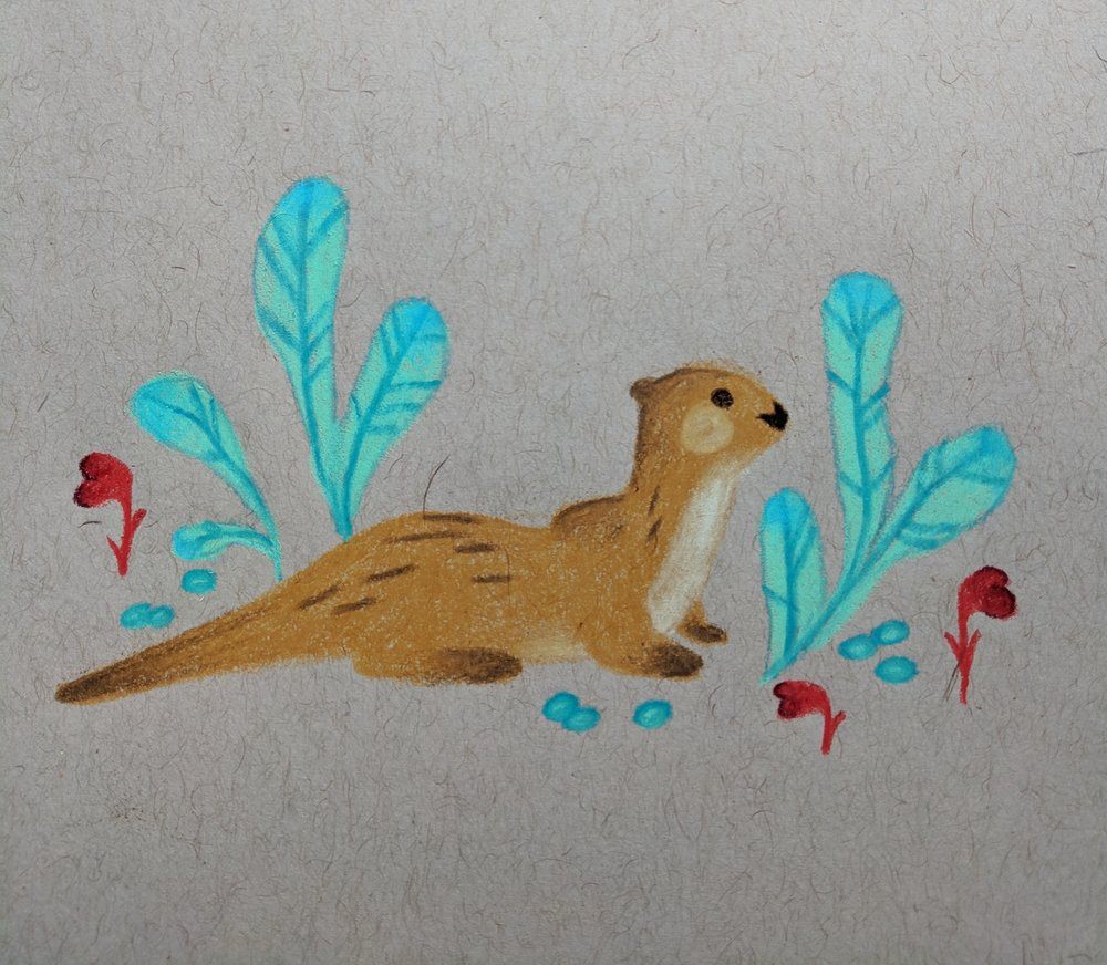 aaaaand, one of the animals I most strongly identify with--the RIVER OTTER.
