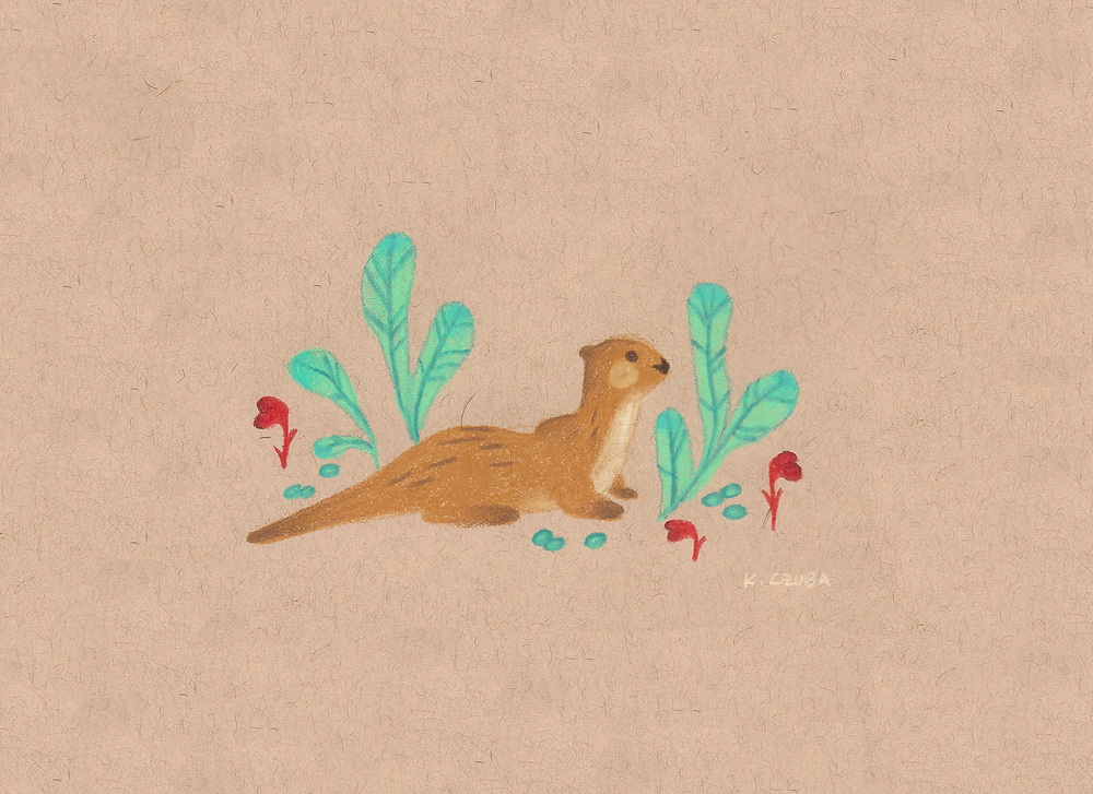 otter buddy