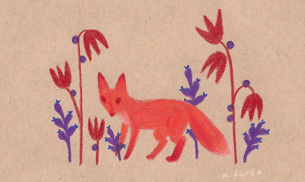 fox buddy