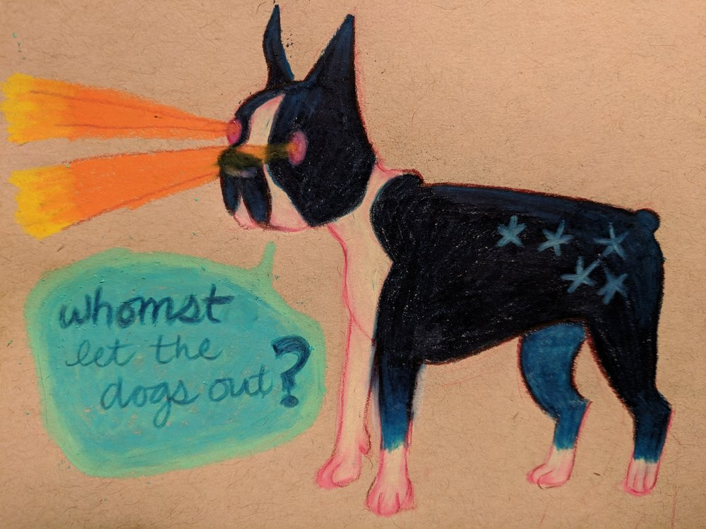enlightened terrier
