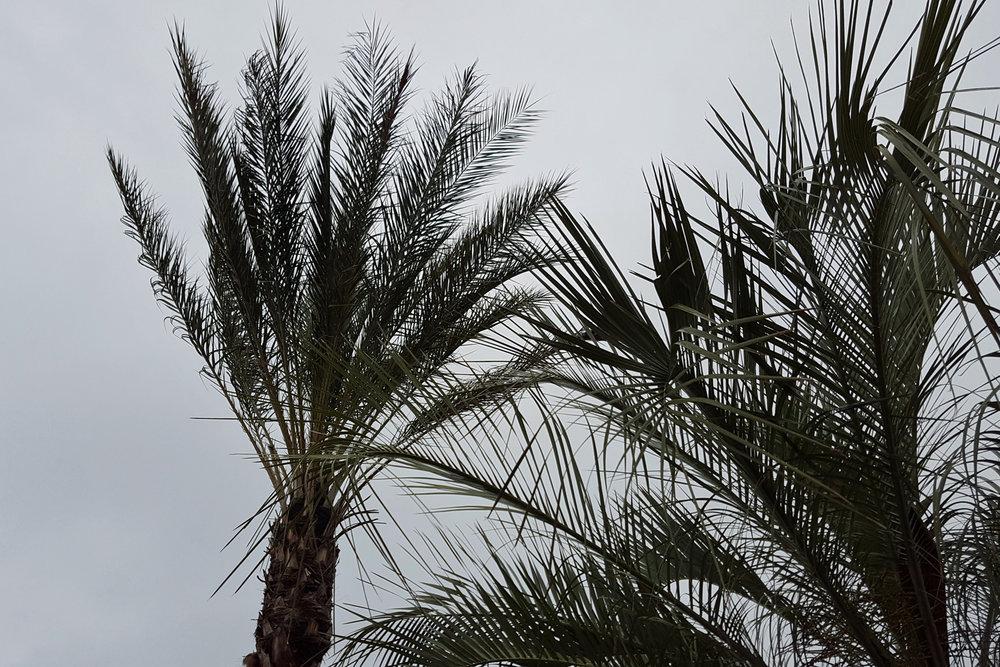 02-arriving-San-Diego.jpg