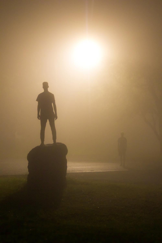 Fog (3 of 20).jpg