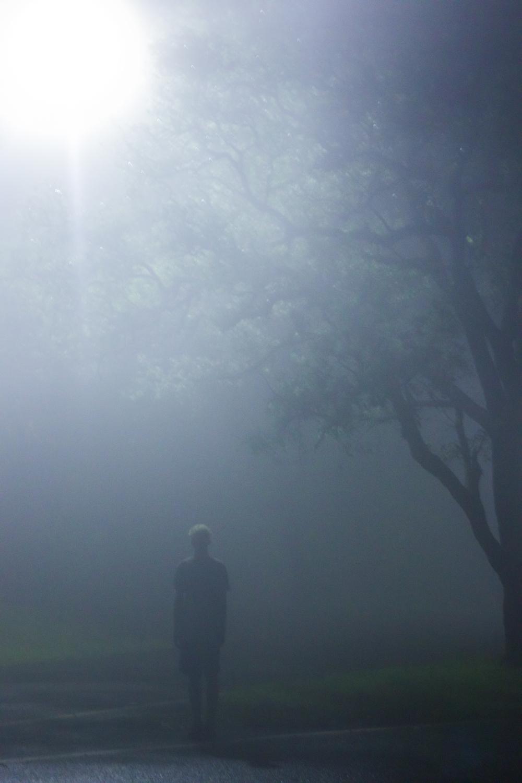 Fog (13 of 20).jpg