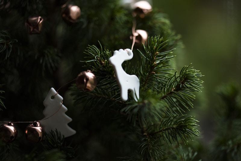 reindeer_christmas.jpg