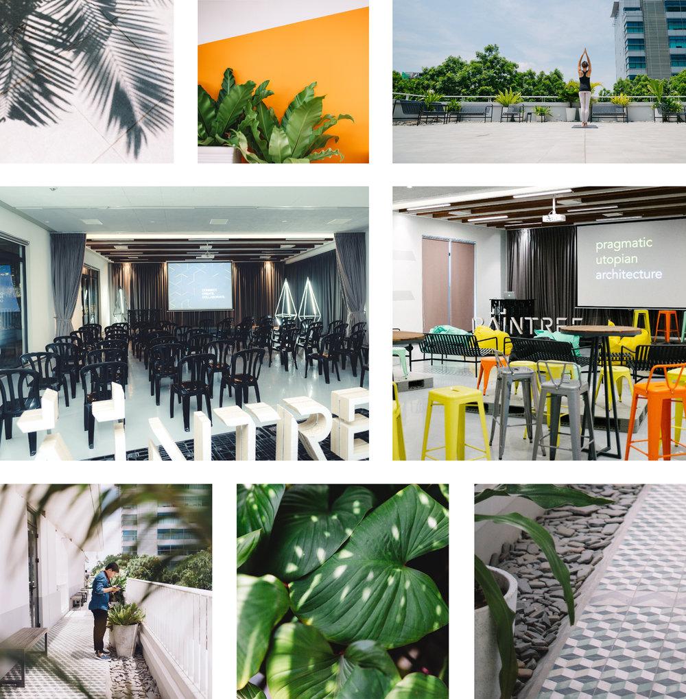 raintree-canopy-crown-rooftop-spaces.jpg