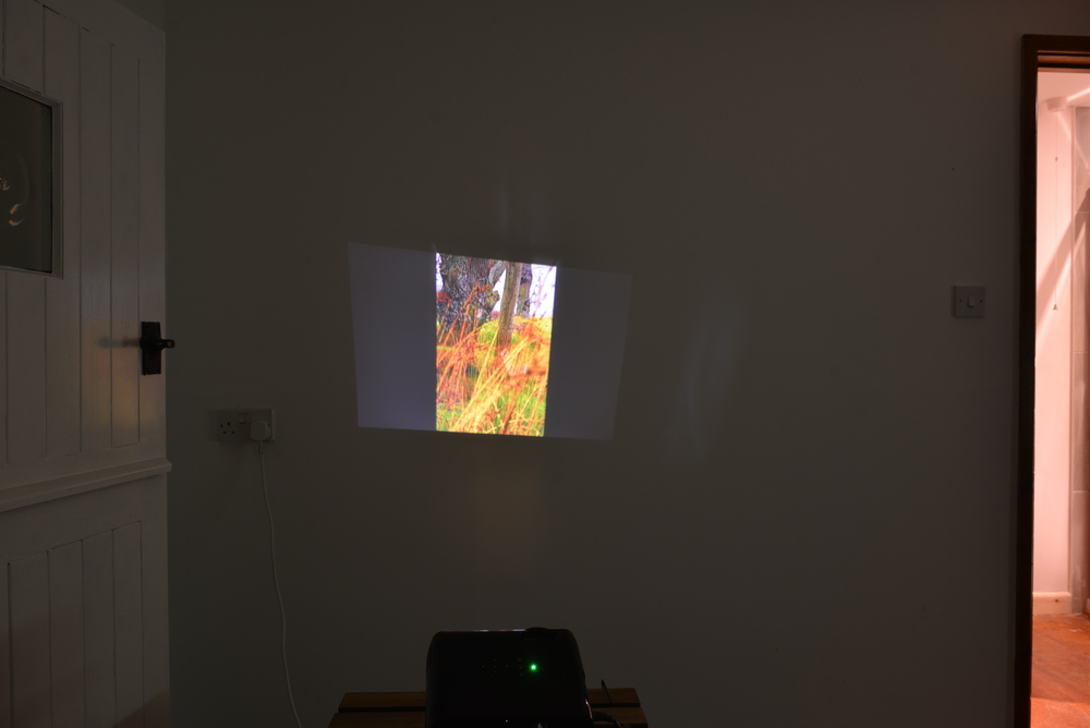 Hannah Cook ,  Slideshow , 2016