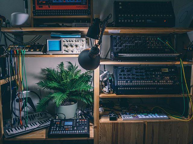 🌴 . . #factmusicgear #factmusicstudio #producerlife #musicstudio #inthestudio #musicgear #analogsynth #musictech #recordingstudio #bedroomstudio