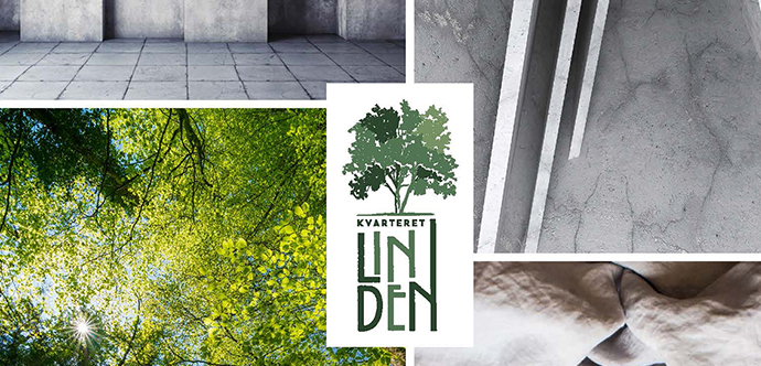 Linden_HBAB.jpg