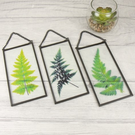 TEMERITY JONES BOTANICAL HANGING GLASS PLAQUE , £6