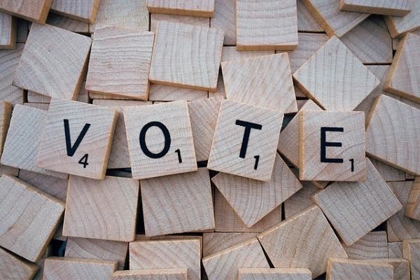 vote-1804596_640.jpg