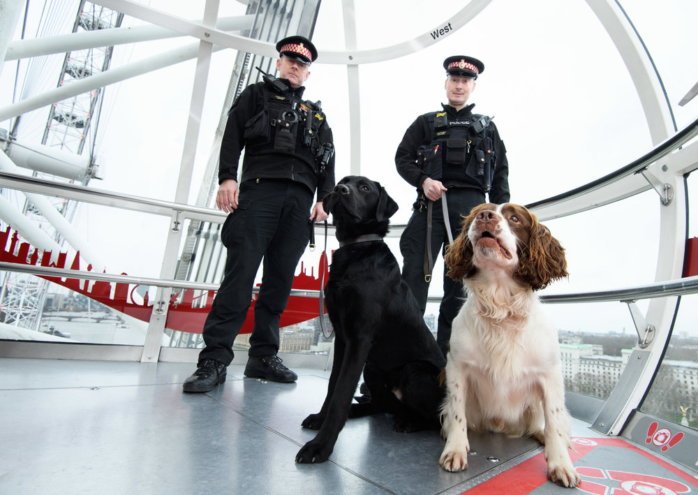 CCLE Celebrates CNY with the help of City of London Police Dogs (4).jpg