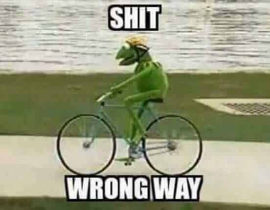 Kermit the frog needing to take a change in direction to avoid racism