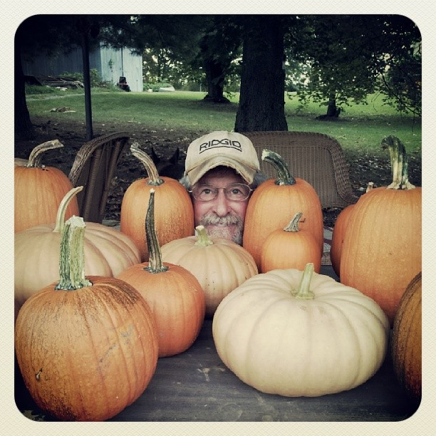 pumpkinbob.jpg