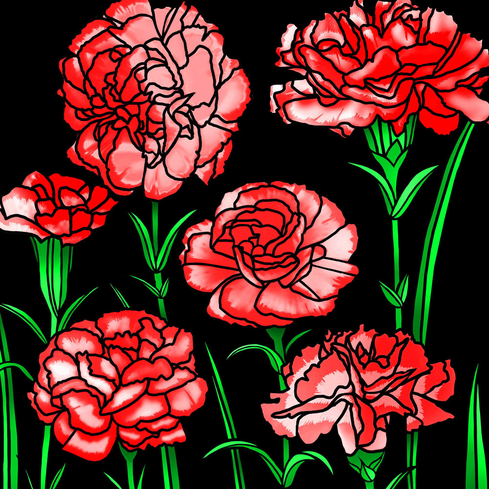 CARNATION DISPLAY – Design Ref. 2601