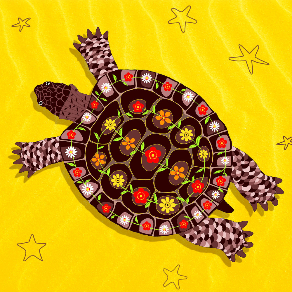 TIM THE TURTLE – Design Ref. 2537