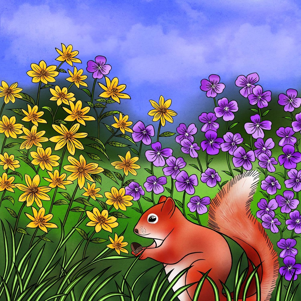 SQUIRREL AT PLAY – Design Ref. 2484