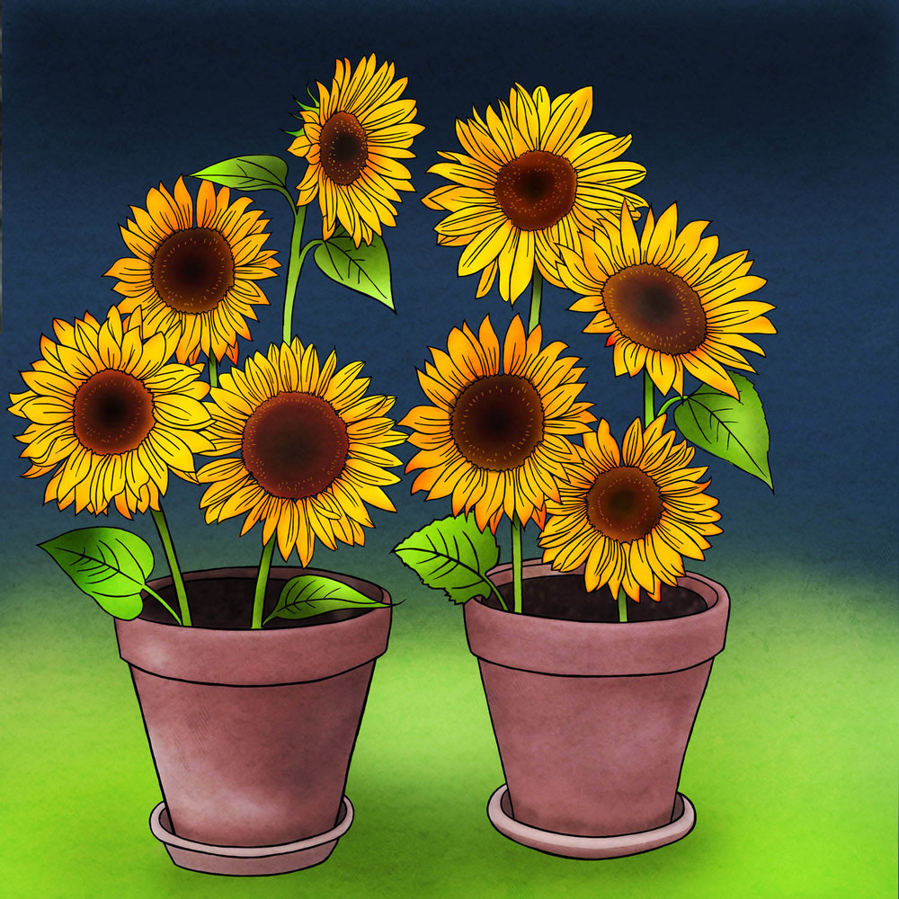 POTTED SUNFLOWER – Design Ref. 2479