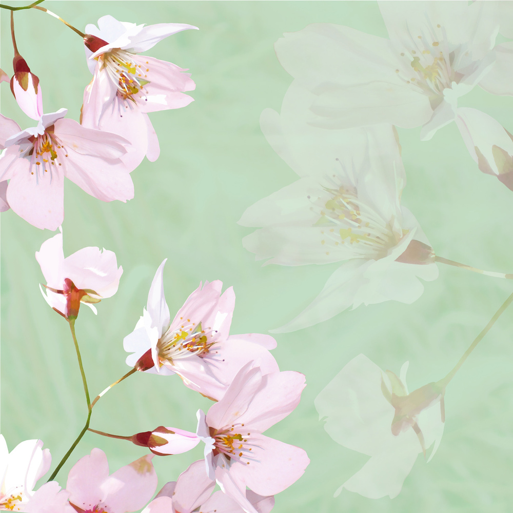 BLOSSOM ON GREEN – Design Ref. 1418