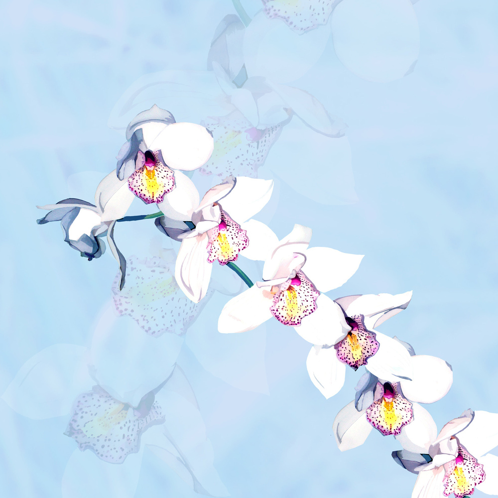 ORCHID ON BLUE – Design Ref. 1555