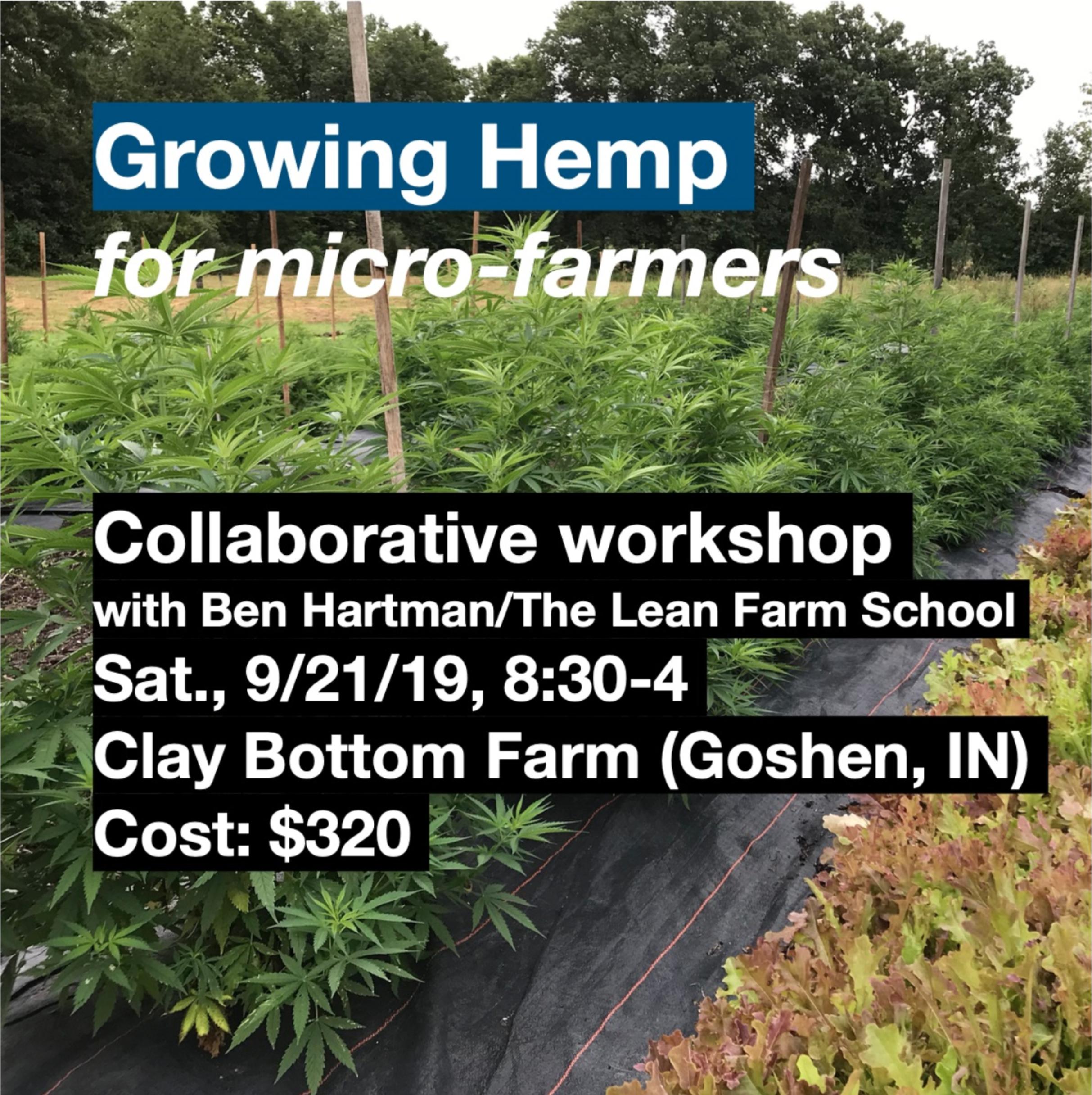 Hemp Workshop with Ben Hartman/The Lean Farm School — Clay Bottom Farm